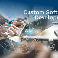 Points of interest and Disadvantages of Customized Software